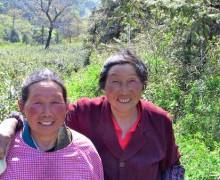 Rosy Faced Tea Pickers