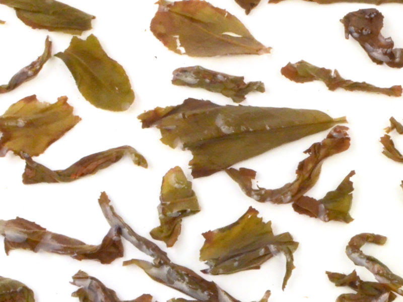 Ba Xian wet tea leaves floating in clear water.