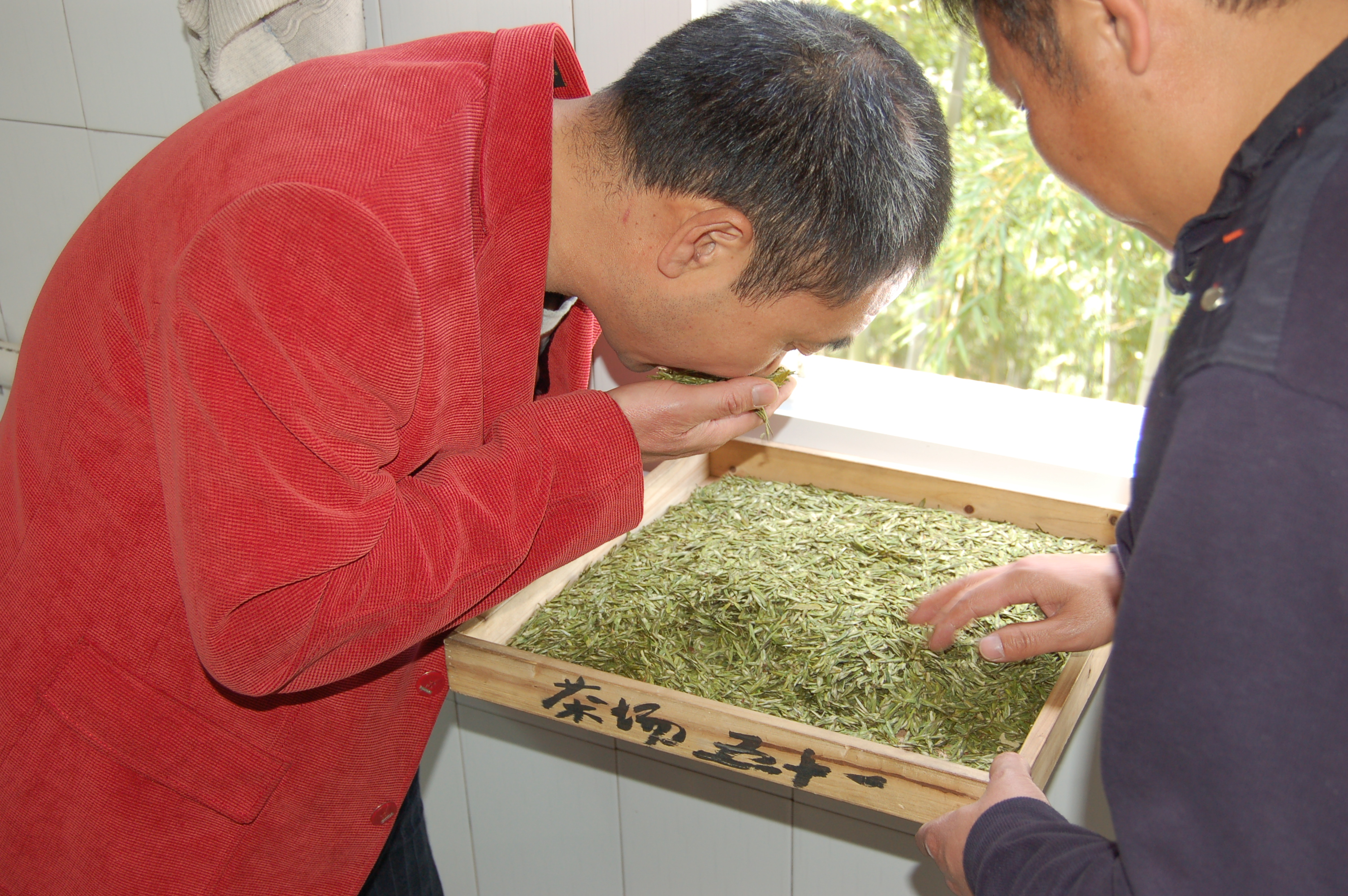 DA Fo Longjing green tea