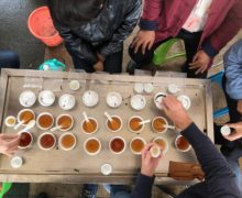 A group of people around a table with a dozen teas set out for tasting.