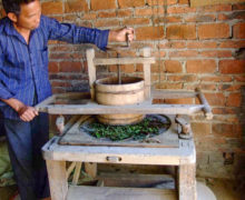 A man operating an old-fashioned wooden tea kneading machine.